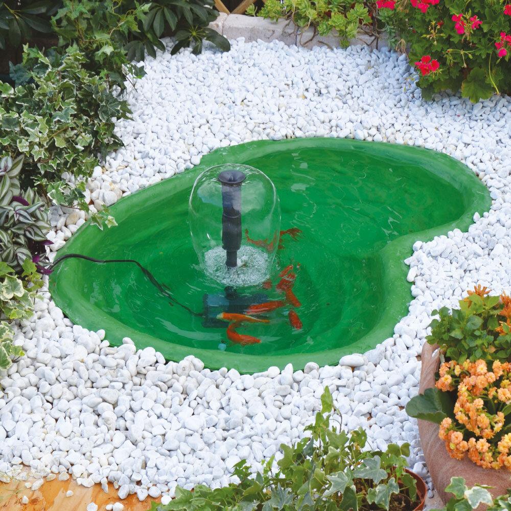 Laghetto caldonazzo giardini d 39 acqua for Laghetto i giardini