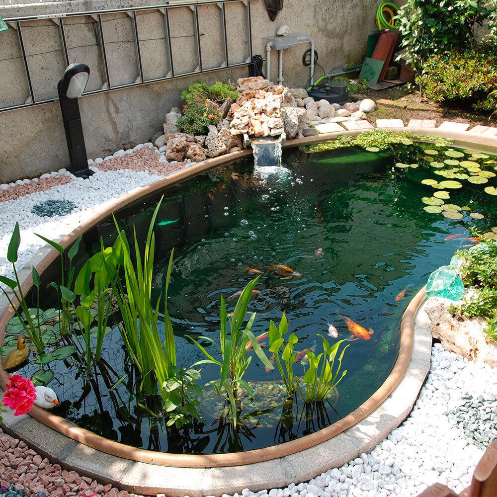 Laghetto koi maldive giardini d 39 acqua for Laghetti e carpe koi