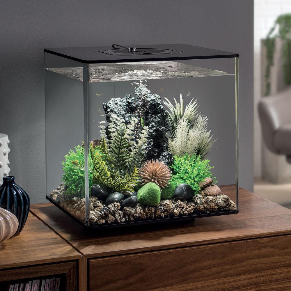 acquario biorb cube 30 giardini d 39 acqua On acquario in giardino