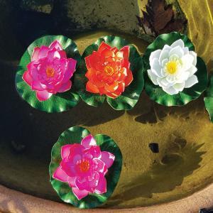 Ninfee decorative galleggianti | Giardinidacqua.it
