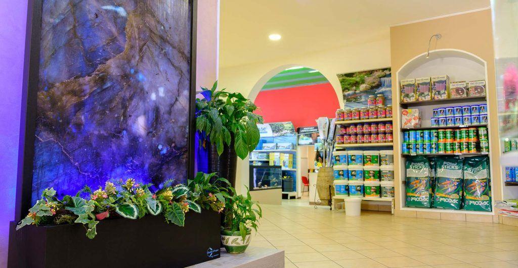 Interno del negozio con finestra acqua | Giardinidacqua.it