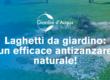 Laghetto da giardino un efficace antizanzare naturale